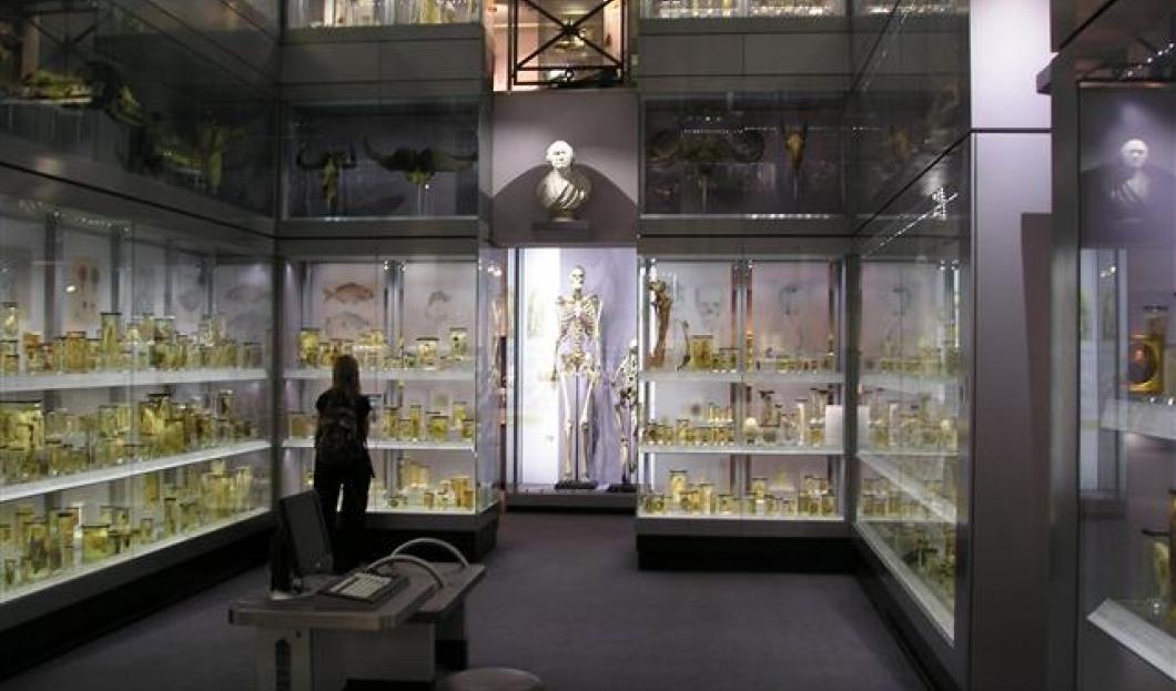亨特利安博物馆
